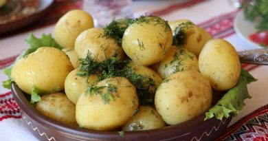 Potato Power high-quality protein that's good for women's muscle Facts Articles protein