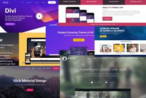 Top-10-Best-WordPress-Themes-for-Apps-Facts-Articles